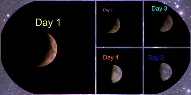 Attachment Moon Phases by TrevorG USA.png